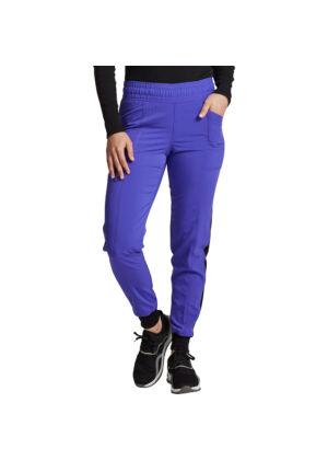 Dickies ženske hlače ljubičasta - DK155-FZGR